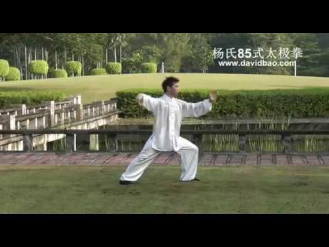 【上選択】 楊式太極拳 動畫 - 人気のある畫像を投稿する