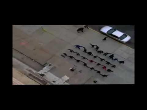 Gary Jules: Bláznivý svět