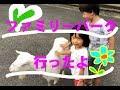 富山市ファミリーパーク行ったよ!動物園 の動画、YouTube動画。