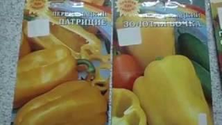 СЕЕМ ПЕРЕЦ ПРАВИЛЬНО  ПИКИРОВАТЬ ИЛИ НЕТ  Видеоурок от Ольги Черновой для начинающих садоводов и ого