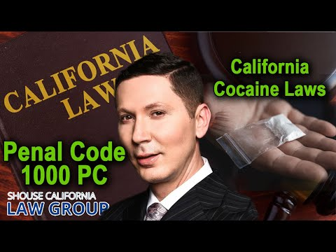 "Busted for ""Cocaine""? Here are the laws in California"