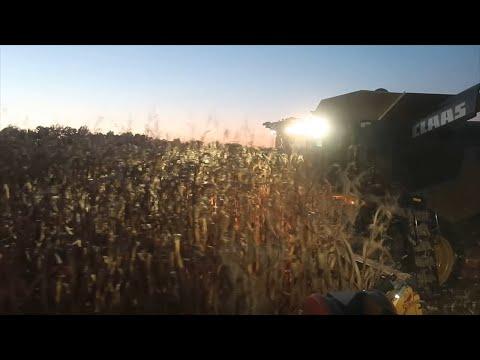 Ohio Fall Harvest 2018 day 21
