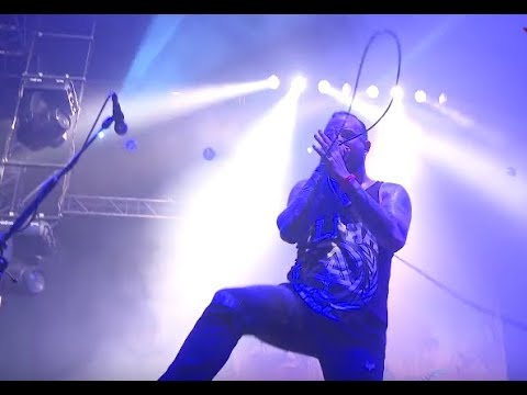 August Burns Red new BTS video - Kataklysm DVD - Paradise Lost - Septicflesh - 1349