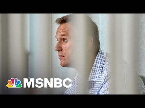 'What Are You So Afraid Of?': Reporter Confronts Putin Over Alexei Navalny