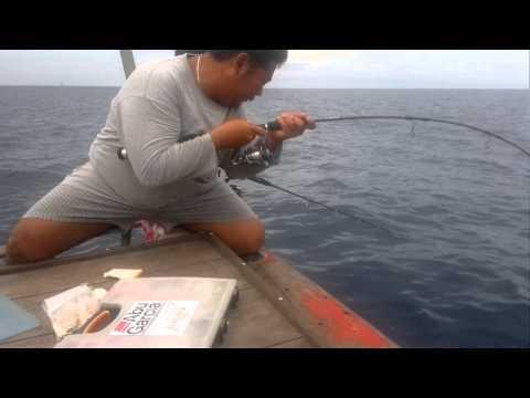 ตกปลาหูช้าง