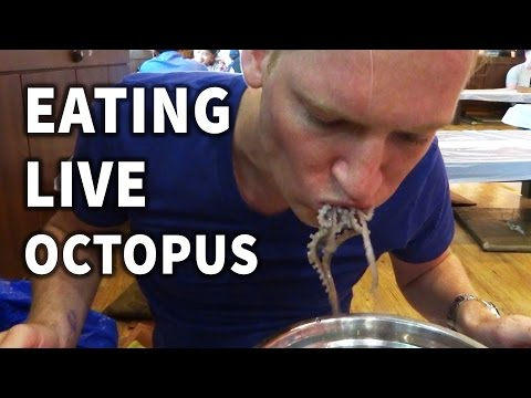 Thumbnail: Eating Live Octopus in Korea