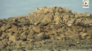 Trévou-Tréguignec: La plage de Trestel - Bretagne Télé