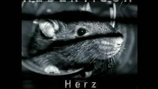 Rebentisch - Herz Zerrissen - Neongift [Rmx by Cabo de Gata] (2009) - Track 9