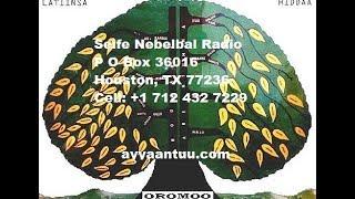 Seife Nebelbal Radio, Oromo News in Amharic, October 13, 2018