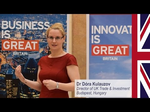 What do UK Trade & Investment do in Hungary?