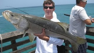 How to Make Snook Rigs for Pier Fishing!