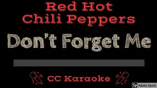 Red Hot Chili Peppers Don't Forget Me CC Karaoke Instrumental Lyrics