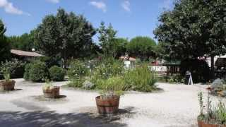 Camping Le Braou Bassin d'Arcachon