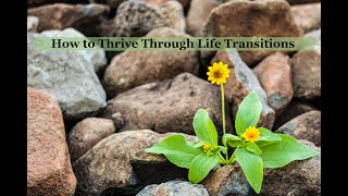 How to Thrive Through Life Transitions