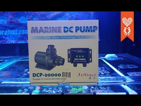 Jebao DCP 20000 return pump 6 month review