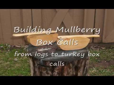 Building Mullberry Box Calls, from logs to turkey calls