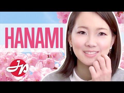 Learn Japanese HANAMI Words  (Việt Sub)