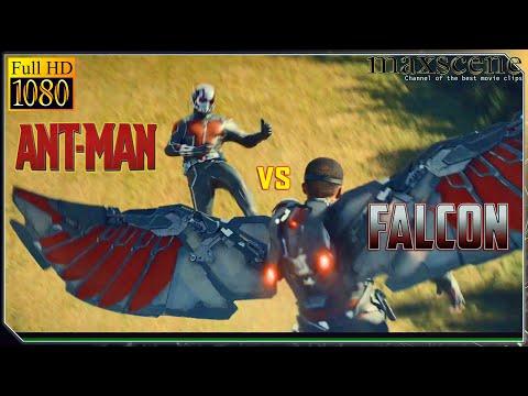 ANT-MAN Vs Falcon