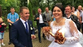 Оформление и проведение свадьбы Анны и Артема Евдокимовых. Ведущая Ирина Седых