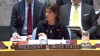"""Nikki Haley: """"Russia has been cheating, and now they"""