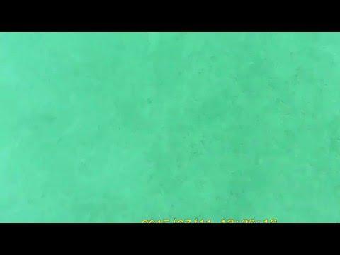 Buckland dive