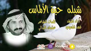 شيله حبه الالماس المنشدفهدالمسيعيد الشاعر عثمان البذالي مهداه الى بنته هيفاء بمناسبه زواجها