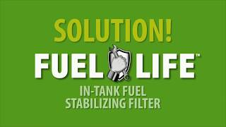 SAVE YOUR ENGINE! 2 Year Protection! Makes Gas Better Over Time!