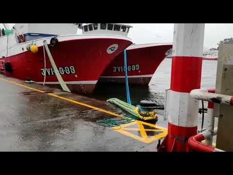La flota gallega permanece amarrada
