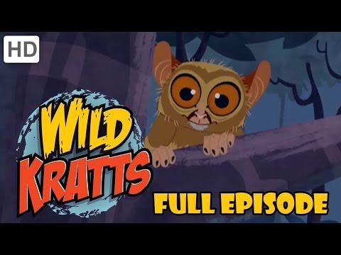 Wild Kratts - Googly Eye The Night Guru and Raptor Round Up (Full Episodes)