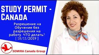 🔴 STUDY PERMIT  🇨🇦 - Разрешение на Обучение без разрешения на работу. ЧТО делать? -  【18/11/2019】