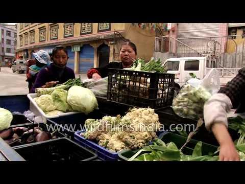 Get fresh organic vegetables at your door step in Nyalam