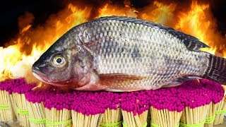 Can 50,000 SAFETY MATCHES Cook FISH Tilapia? - EXPERIMENT