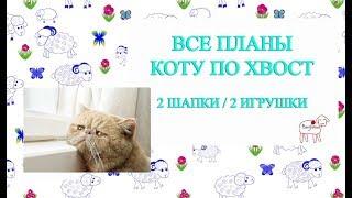 Все планы коту под хвост // Две игрушки // Шапка и берет // 14.01.2019