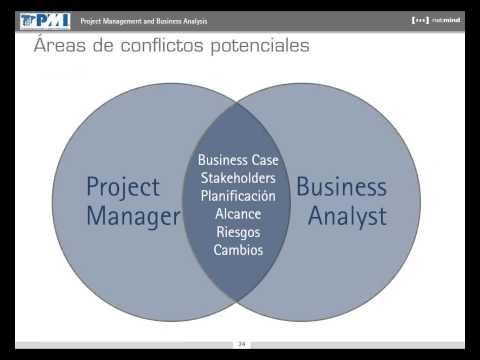Project Management y Business Analysis, por Alfred Maeso