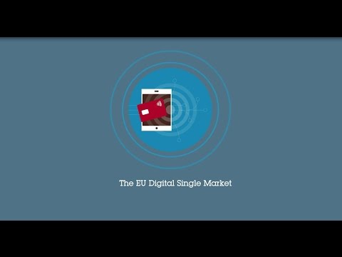 The EU Digital Single Market