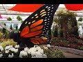Flower & Garden Show at Hicks Nurseries  Westbury Long Island
