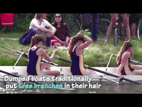 Cambridge College Bumps Races