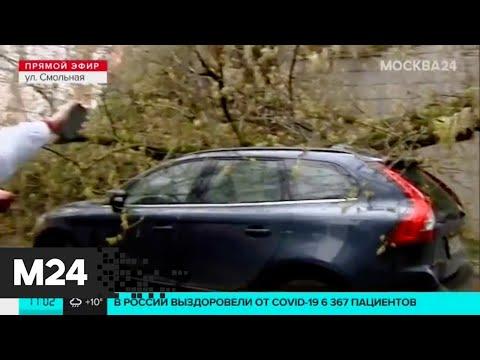 Москву заливает аномальный ливень: два ведра дождя на квадратный метр - Москва 24