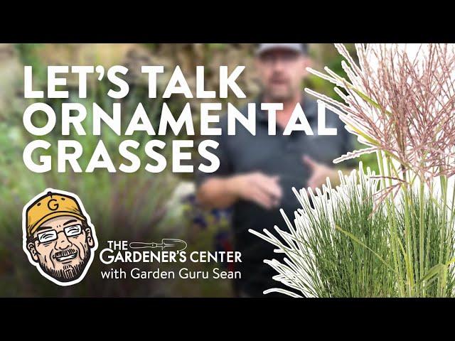8/19/2021 Ornamental Grasses with Sean
