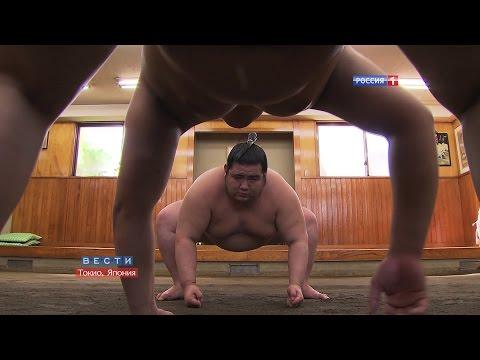 Скрытая жизнь сумоистов / Concealed life of Sumo wrestlers / 相撲力士の日常生活