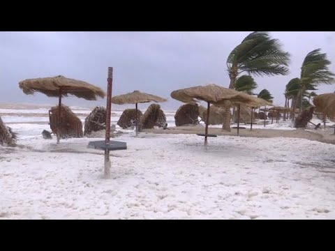 مقتل فتاة عُمانية طارت مع رياح إعصار ميكونو و7 قتلى في سوقطرى   …  - نشر قبل 1 ساعة