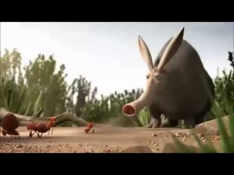 Ants Vs Anteater Youtube