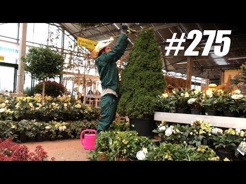 #275: Tuinieren in een Tuincentrum [OPDRACHT]