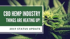 2019 CBD LAWS UPDATE - WHAT HAS CHANGED?
