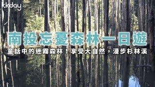 KKday【台灣超級攻略】童話中的迷霧森林!南投忘憂森林一日遊
