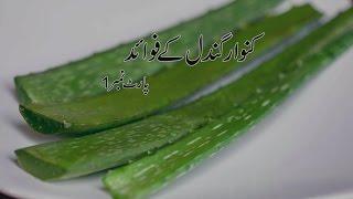 kawar gandal ky fawaid part-1 by Hakeem Amir Razaq Obhaya