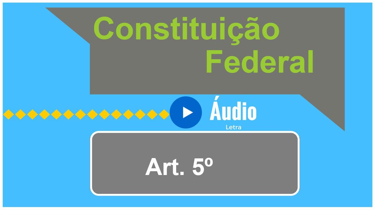 Artigo 16 da constituicao federal