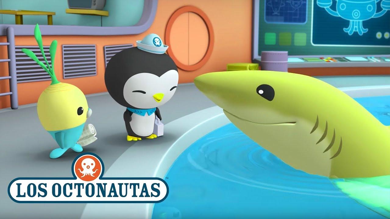 Los Octonautas Oficial En Español - Los peces son increíbles