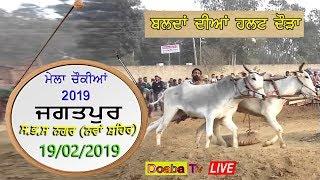Live Bull Halat Race Jagatpur ( Nawanshahr) Mela Chonkiya Da 2019