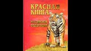 "Презентация на тему""Красная книга""."